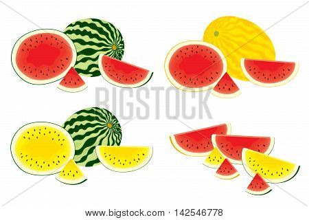 Vector set of different, isolated, fresh, whole watermelons and slices of watermelon on white background. Red, yellow watermelons. Colorful vector illustration.