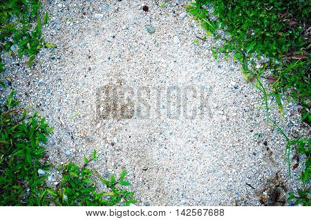 Grass Frame On Sand Background