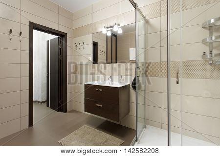 Shower and sink built near the entrance door. Interior design