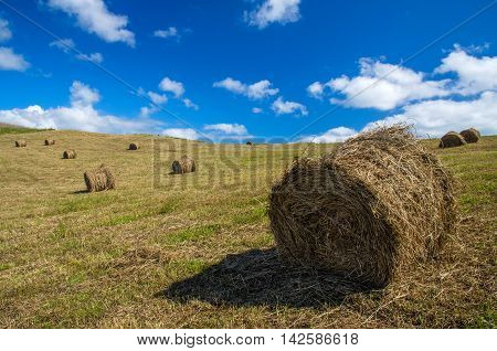 Rick (bales) of hay under the blue sky