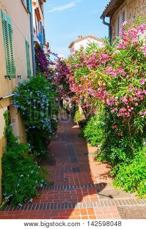 Alley With Entwined Houses In Antibes, France