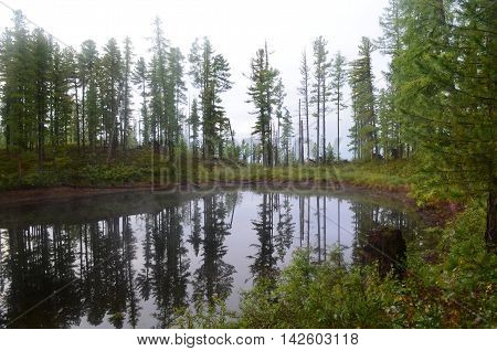 A Small Lake In The Forest, Sayan Mountains.