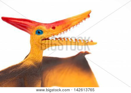 orange pterosaurs toy on a white background close up
