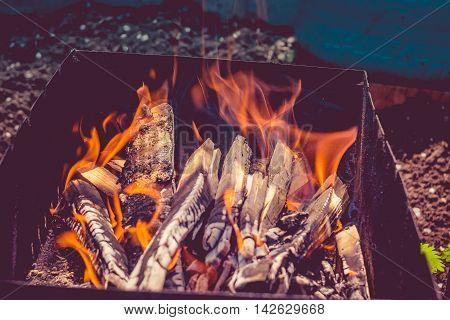 Firewood In A Brazier