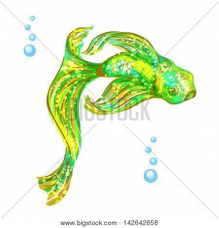 Tropical aquarium exotic green fish. Isolated image on white background.