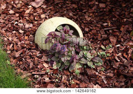 Garden - Retro flowerpot sticking out of the soil.