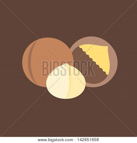 Vector macadamia icon set, flat design on brown background