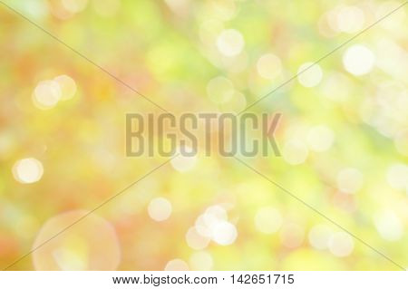 Colorful blurred abstract background of the orchard with green leaves red berries and sun glare