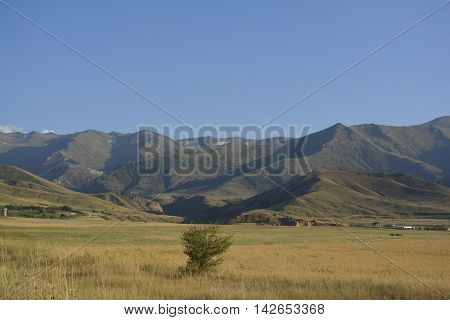 landscape with mountains in the valley , a lone tree in a field, foothills