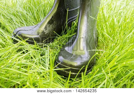 Wet rubber boots on green lush grass