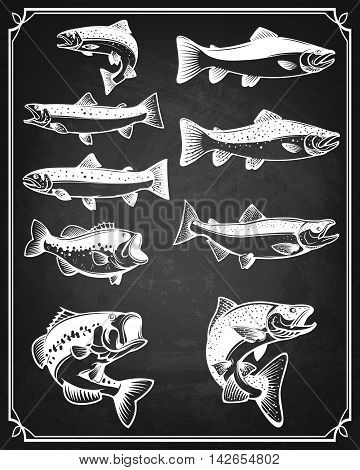 Set of trout salmon and perch fish icons on grunge background. Design elements for restaurant menu poster. Vector illustration.