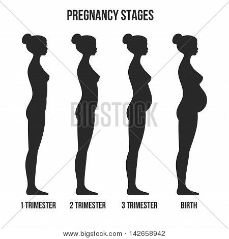 Pregnancy Stages and Birth Infographics Silhouette. Vector illustration.