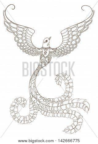 Ornate doodle bird outline on white background