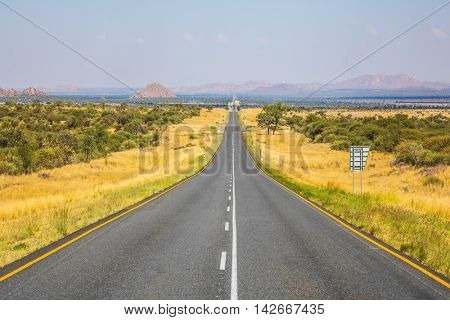 Good asphalt road in Namibia. Low trees and autumn yellow grass savannah