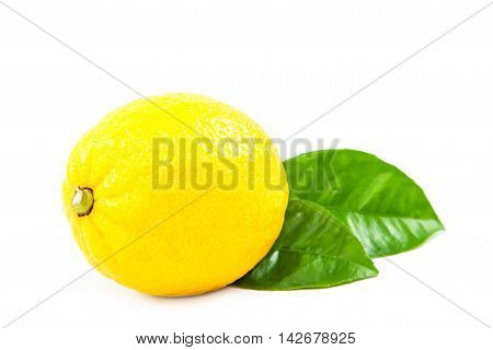 Lemon fruit with green leaves isolated on white background.