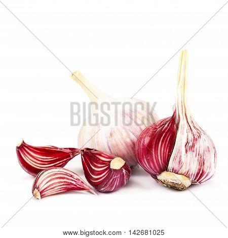 Fresh garlic isolated on the white background.