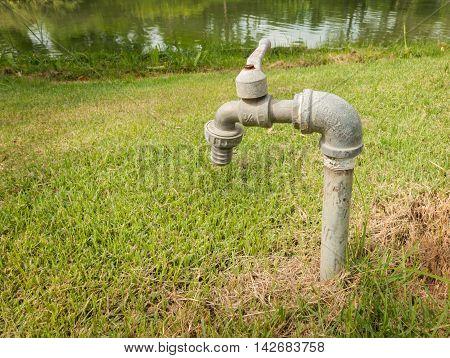 Faucet on green grass garden Faucet field.