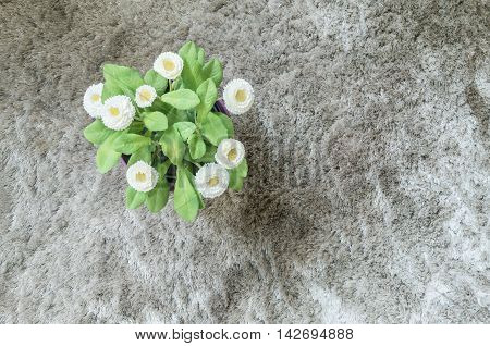 Closeup artificial plant with white flower on purple pot on gray carpet textured background in top view