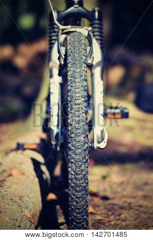Mountain Bike In The Woods. Sport In Nature.