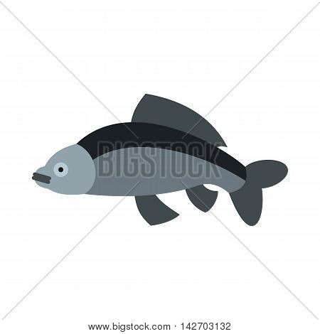 Carp icon in flat style isolated on white background. Sea creatures symbol