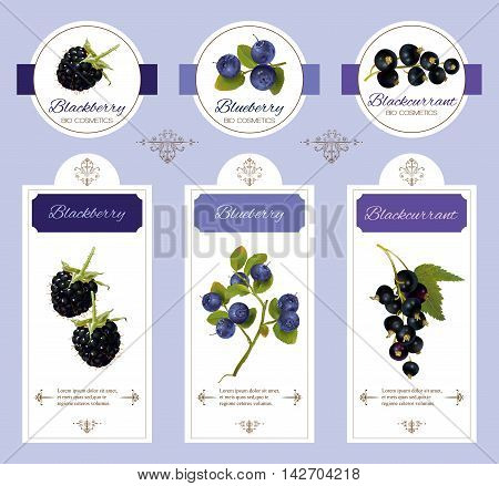 Vector berry cosmetic banner with blackberry blueberry and blackcurrant. Design for natural cosmetics beauty store beauty salon organic health care products.