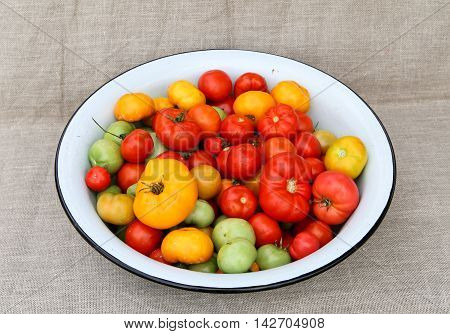 tomato harvesting basin. A tightly woven linen as a background