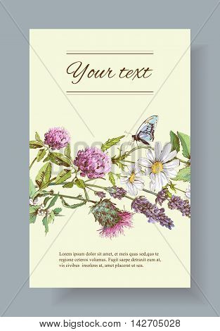 Vector wild flowers and herbs banner. Design for herbal tea, natural cosmetics, honey, health care products, homeopathy, aromatherapy. With place for text