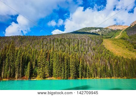 The emerald-green lake surrounded by a pine forest. Magic mountain  Emerald lake  in Canada
