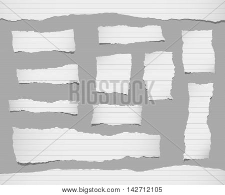 Pieces of ripped white ruled paper are stuck on gray background.