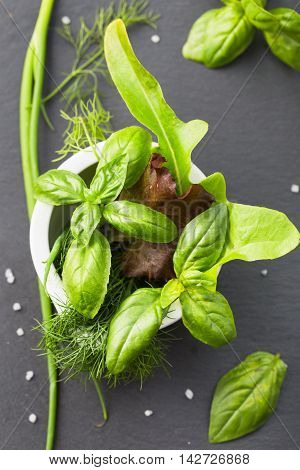 Basil, lettuce and fennel in mortar top view
