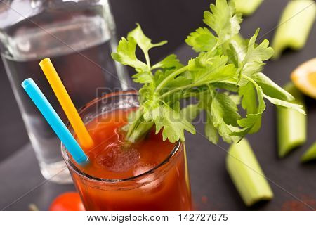 Bloody Mary cocktail with celery closeup shot