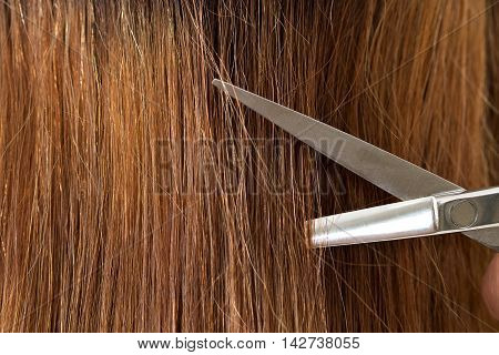 Close up view of hairdresser scissors cutting long female hair. Keratin restoration healthy hair latest hair fashion trends changing haircut style shorten split ends instrument store concept