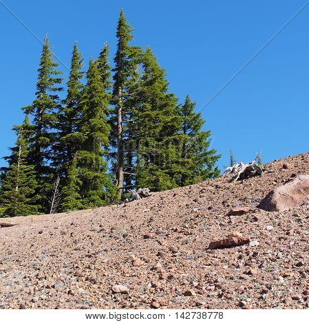The top of d rocky hill plays host to a group of trees in Crater Lake National Park.