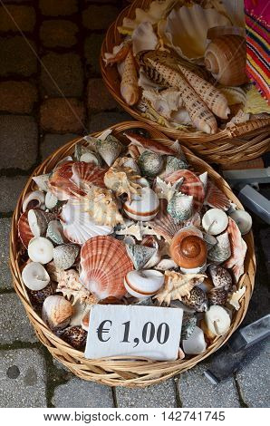 Various sea shells in a wicker basket at 1 euro cost