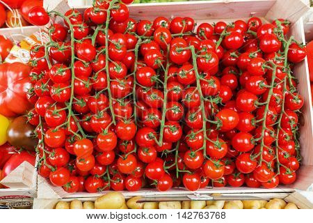 Tomatoes On The Vine On A Farmers Market