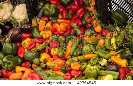 Mix of Peppers, cauliflower and eggplant grown and harvested in Southern California and displayed at a farmers market.