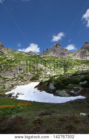 Snow And Flowers At The Foot Of Mountain