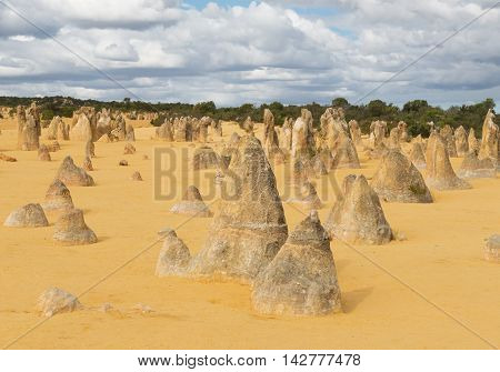 Yellow sand dunes and limestone pillars Pinnacles Desert in the Nambung National Park Western Australia. Selective focus on the front rocks.
