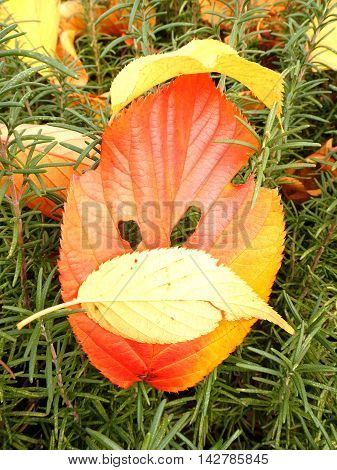 Colorful leaf decoration to the face on the grass background