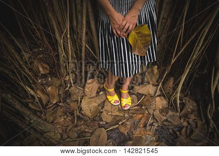 Woman in a striped skirt and yellow sandals standing in the dark tropical forest and holding a big leaf.