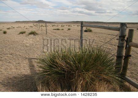 Fence On The Prairie
