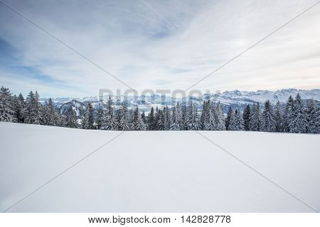 Splendid winter alpine scenery with high mountains and trees covered with snow