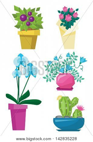 Variety of colorful flowers such as cactus, roses, orchid and other flowers vector flat design illustration isolated on white background.