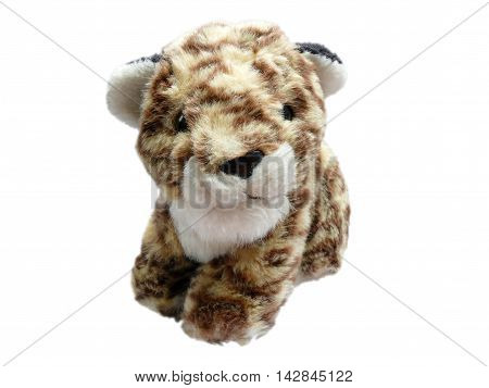 Leopard cub toy isolated on white background