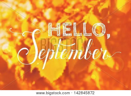 Hello September! Blurred autumn background with greeting inscription. Vector card.