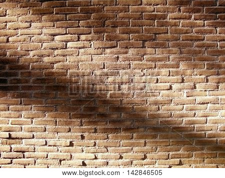 Plain Solid Beige Brick Wall With Shadows Of The Sun Background