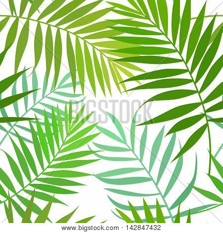Seamless pattern of palm leaves isolated on white background. Vector stock illustration.