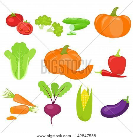 Set of colorful vegetables isolated on white background. Vector stock illustration.