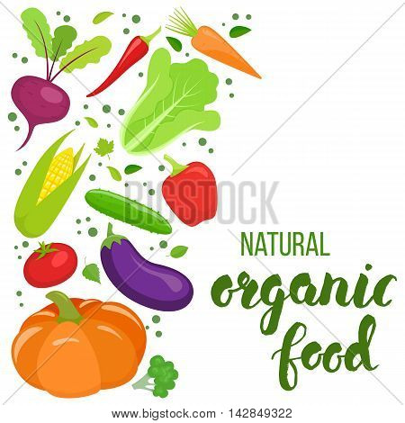 Side vertical border with colorful vegetables. Template for packaging cards posters menu. Handwritten lettering - organic food. Vector stock illustration.