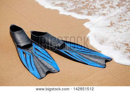 Blue flippers in the surf on the sandy beach; selective focus